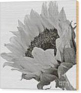Model Wood Print