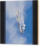 Model Plane 7 Wood Print