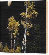 Mogollon Wood Print
