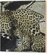 Mom And Baby Cheetah Wood Print
