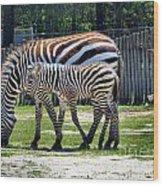 Mom N Baby Stripes Wood Print