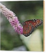 Monarch And Lavender Wood Print