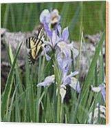 Butterfly On Iris Wood Print