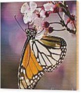Monarch On A Flower Wood Print