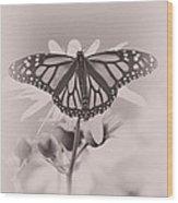 Monarch On Sunflower Wood Print