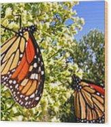 Monarch Rest I Wood Print