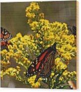 Monarchs On Yellow Wood Print