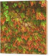 Monet Leaves Wood Print