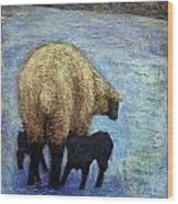 Monkton Ewe With Her Lambs In The Snowy Field Wood Print
