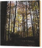 Mono Cliffs Trees Wood Print