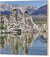 Mono Lake Yosemite Wood Print