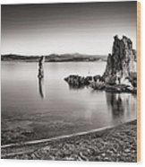Monochromatic Mono Lake Sunrise Wood Print