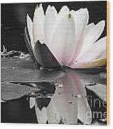 Monochrome Lily Wood Print