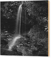 Monochrome Splash Wood Print