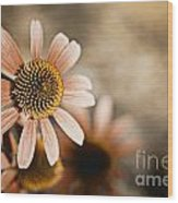 Monotone Flower Wood Print