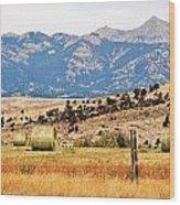 Montana Farm9404 Wood Print