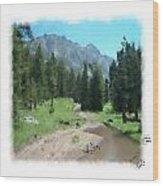 Montana Mudhole Wood Print