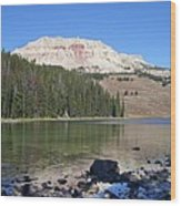 Montana100 0883 Wood Print