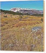 Montana100 0885  Wood Print