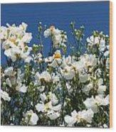 Monterey Beauty Wood Print