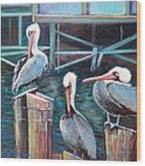 Monterey Pelicans Wood Print