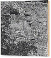 Montezuma Castle  Wood Print