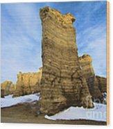 Monument Rocks Wood Print