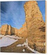 Monument Rocks In Kansas Wood Print