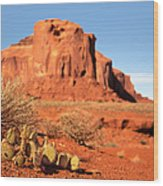 Monument Valley Cactus Wood Print