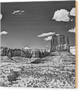 Monument Valley In Monochrome  Wood Print