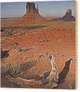 Monument Valley, Kayenta, Arizona, Usa Wood Print