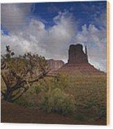 Monument Valley Vista Wood Print