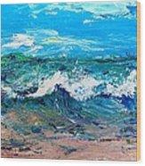 Moody Beach In A Mood Wood Print by Scott Nelson