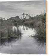 Moody Marsh Wood Print
