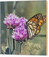 Moody Monarch Wood Print