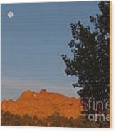 Moon Above Kissing Camels Wood Print