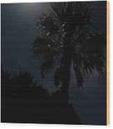Moon And Stars And Palm Trees Wood Print