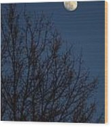 Moon And Trees Wood Print