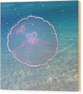 Moon Jelly Wood Print