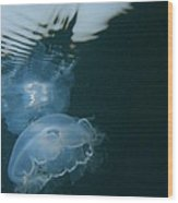 Moon Jelly Ripples Wood Print