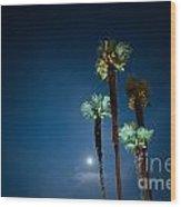 Moon Light And Palm Trees Wood Print