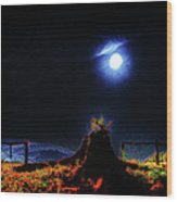 Moon Lite In Hdr Wood Print