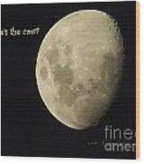 Moon Missing Cow Wood Print by Vicki Ferrari