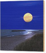 Moon On The Beach Wood Print
