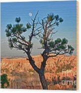 Moon Over Bryce Canyon Wood Print