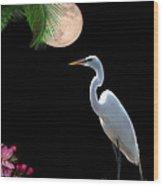 Moon Over Florida Wood Print