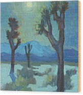 Moon Shadows At Joshua Wood Print