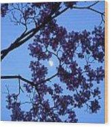 Moon Through Dogwood Wood Print