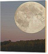 Moon Warrior Wood Print