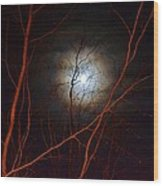 Moonlight By The Camp Fire Wood Print